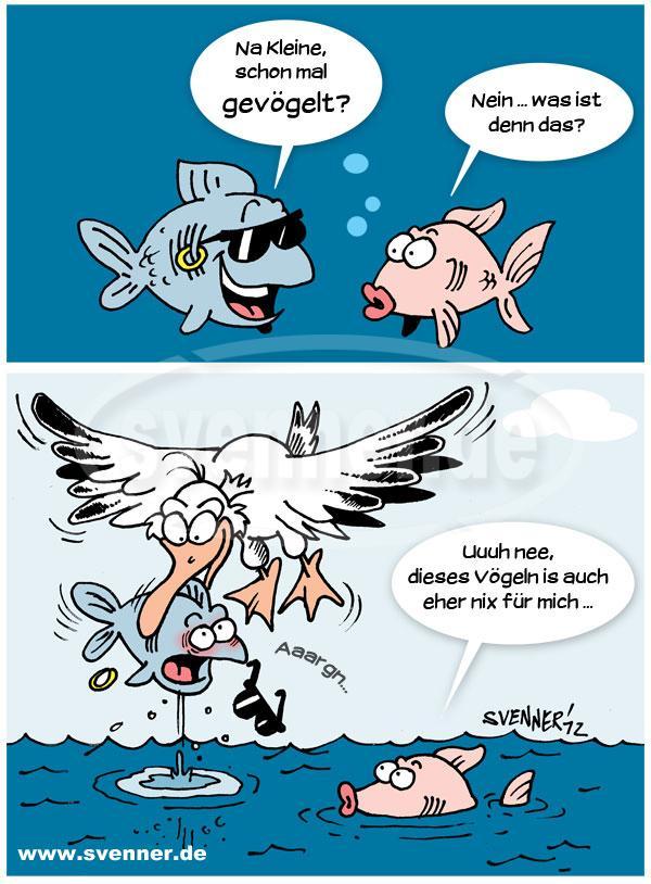 Cartoon Zonk für den Macho ::: svenner.de